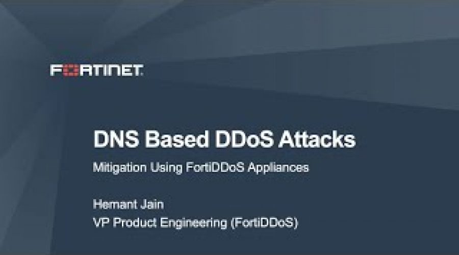 Mitigating DNS based DDoS attacks using FortiDDoS   DDoS Cybersecurity
